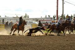 Hometown Rodeo 2018