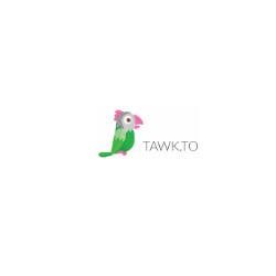Tawkto