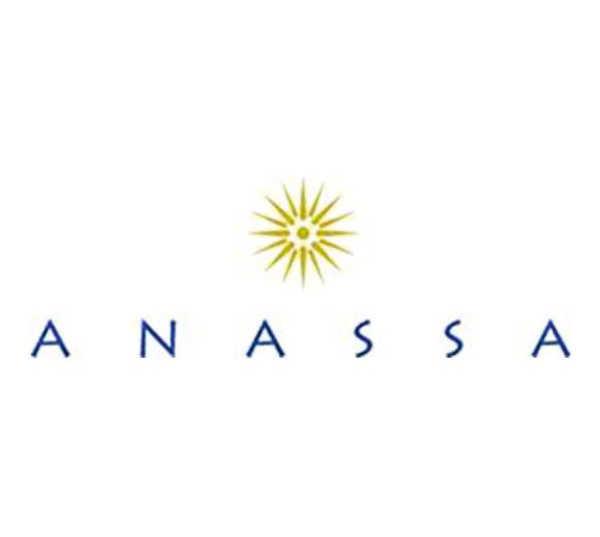 ANASSA HOTEL.jpg