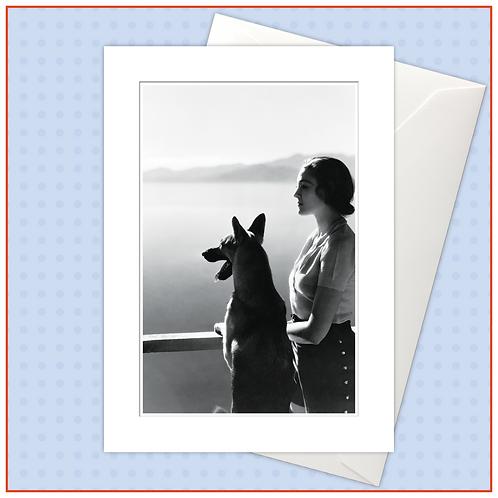 Dogs: Pics
