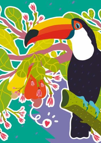 Postcard: Toucan (Print)