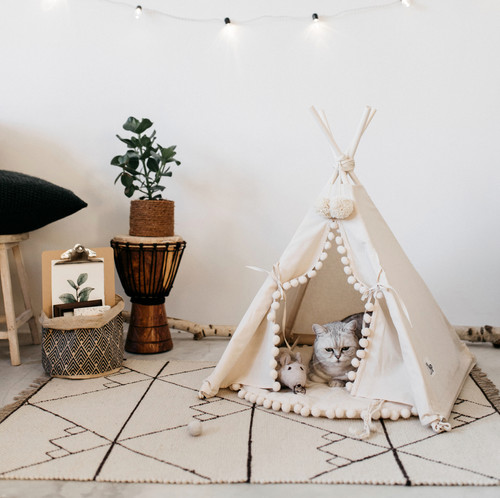 Kids Teepee Amp Pet Teepee Shop Minicamp