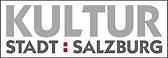 Logo Salzburg city.tiff