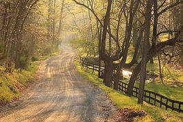 Goodstone road