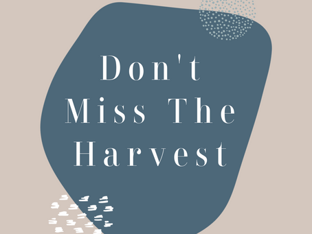 Don't Miss the Harvest