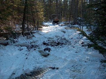 trail clearing 005.JPG