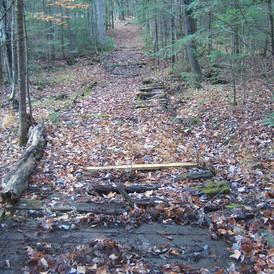 Trail #27 Repairs Needed 2019.JPG