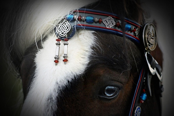 GYPSY VANNER HARNESS