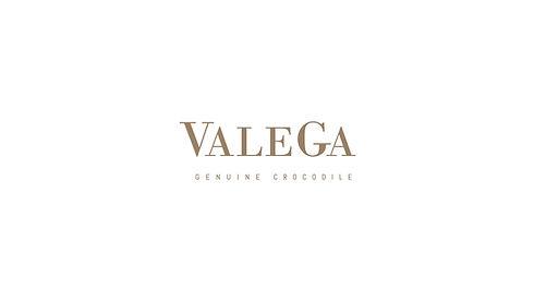 logo Valega-01.jpg