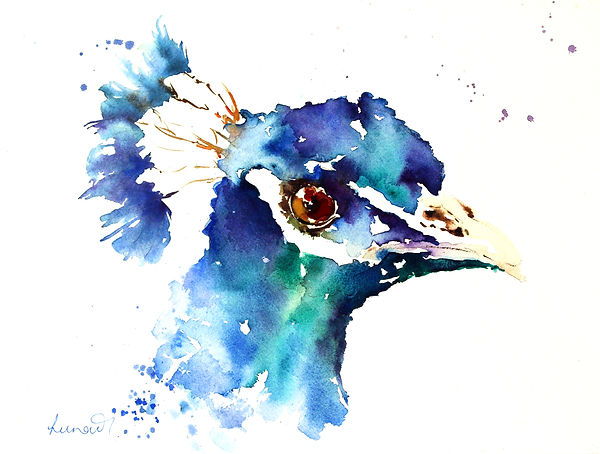 Peacock%20Blue_edited.jpg