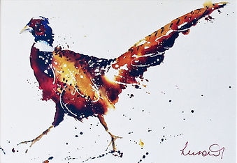 Pheasant Runner AB.jpg
