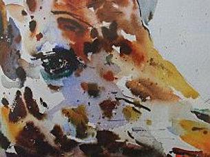 DVD 'Going Wild in Watercolour' by Jake Winkle