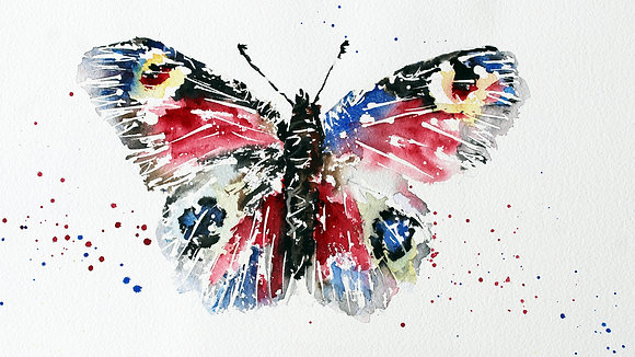 Butterfly Colours
