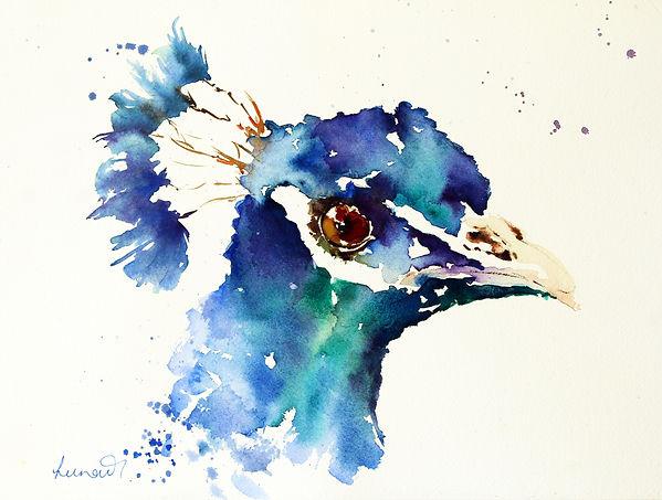 Peacock Blue.jpg