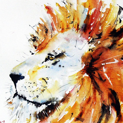 Lord Lion