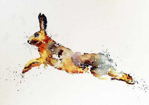 Leaping Hare 2.jpg