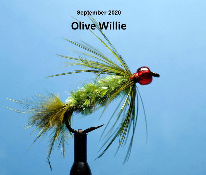 Olive Willy