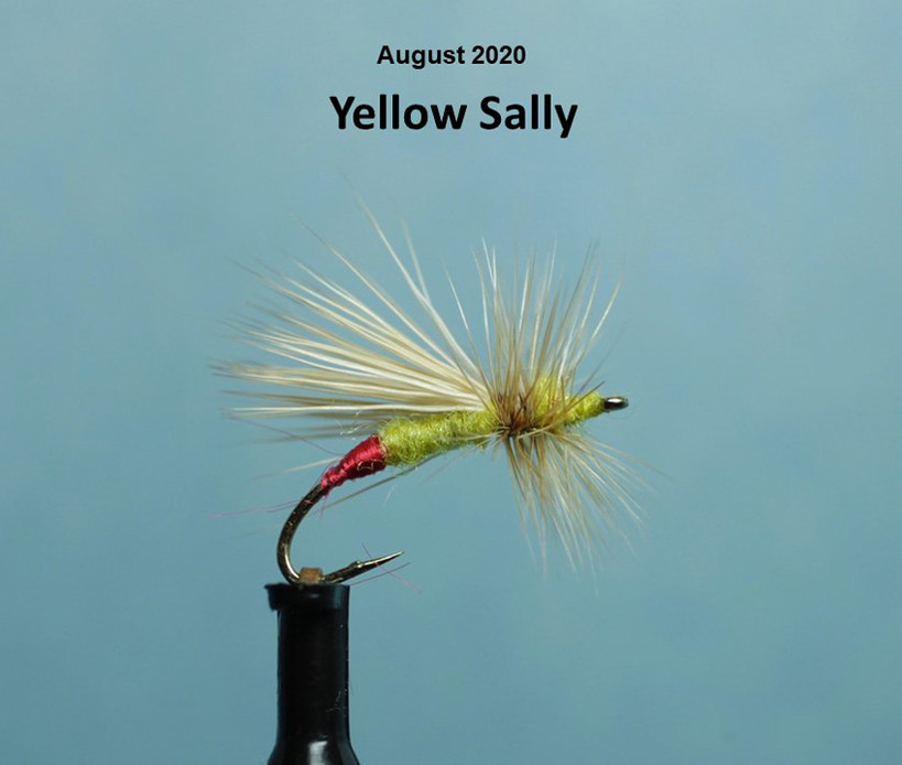 Yellow Sally