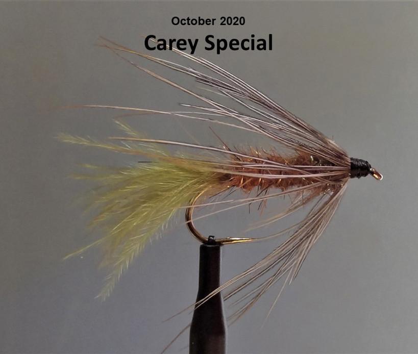 Carey Special