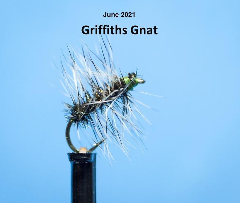 Griffiths Gnat