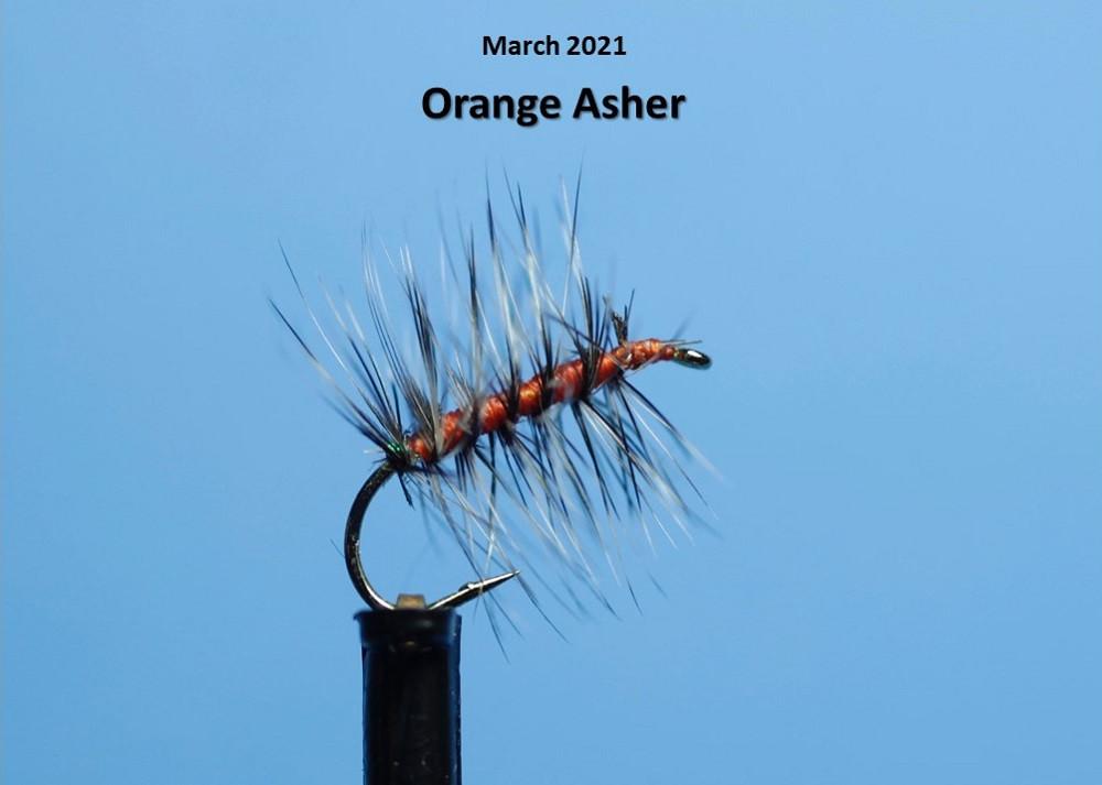 Orange Asher