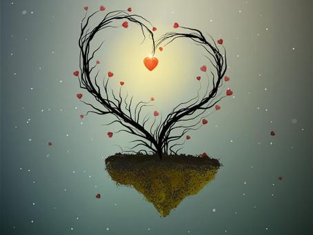 Amour, toujours... ? Episode 1 : la rencontre