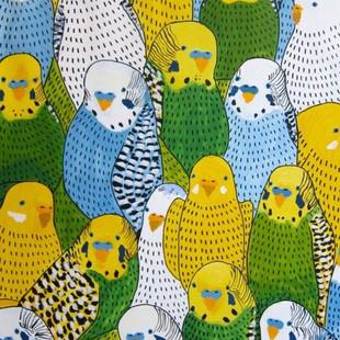 Muhabbet kuşu çiftleşmesi için ne gerekir?
