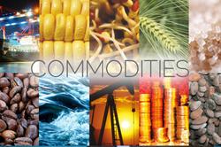 Commodities-Vadodara