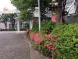 GRN20180513_taikenkai3.jpg