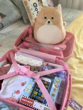 hope suitcase2.jpg