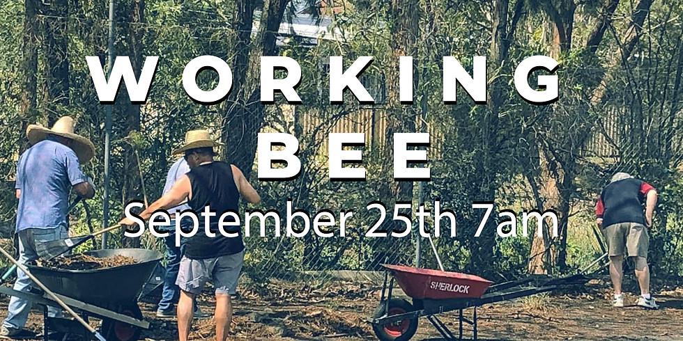 RFC Working Bee