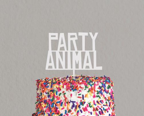 PartyAnimal_MidnightConfetti.jpg