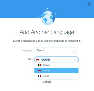 screenshot of Add Another Language dialogue
