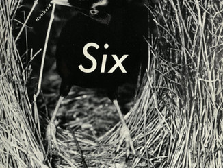 Comme des Garcons Six Number 4 Front Cover