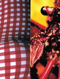comme-des-garcons-six-1_4-book-013.jpg