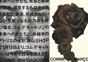 Comme des Garcons 'Face' & AW1995 'Black Roses'