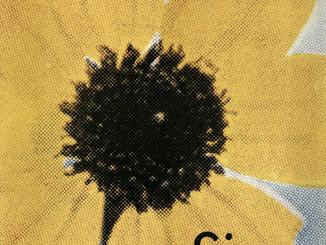 Comme des Garcons: SIX Number 5, 1990 Front Cover | ARCHIVE.pdf