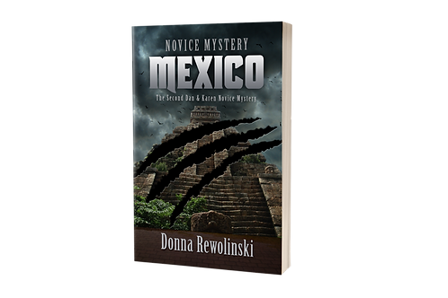 Novice Mystery - Mexico [paperback]