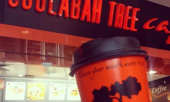 Coolabah Tree Cafe - Northern Gold Coast