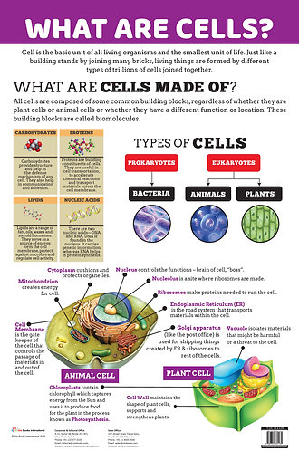 What are Cells? : Charts