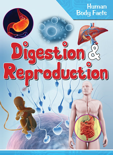Digestion and Reproduction - Human Body Facts