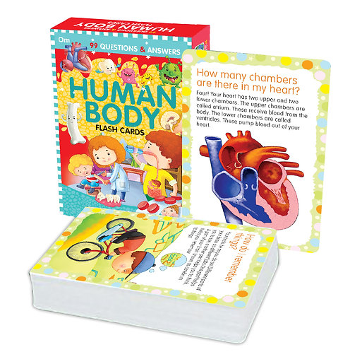 Flash Cards: 99 Questions and Answers Human Body Flash Cards