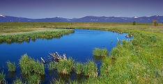 ASBC Clean Water .jpg