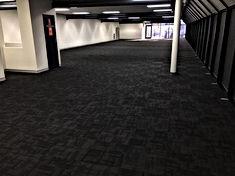 carpet.jpg
