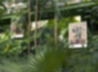 Hortus new.jpg