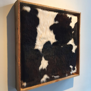 cow hide.jpg