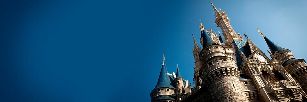 Cinderella_Castle_Perspectives_-_Banner_