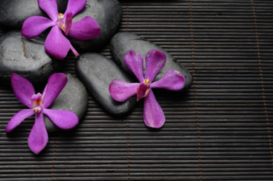Pink orchid with Stones Against bamboo s