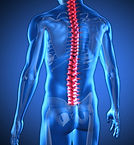 Spine trauma relief