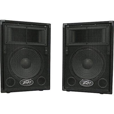 Peavey PVi 10 Speakers